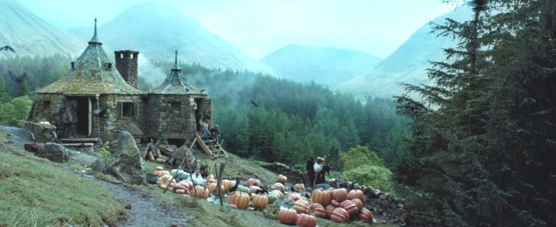 Хижина Хагрида и Запретный лес
