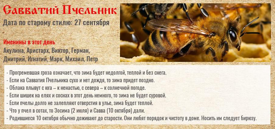 10_10.jpg