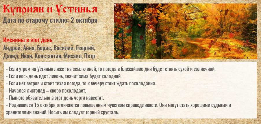 15_10.jpg