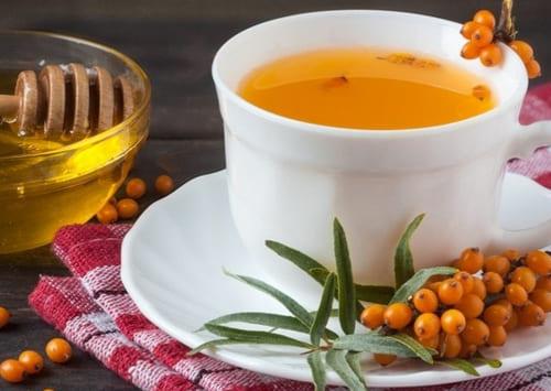 Чай облепиховый: как приготовить дома