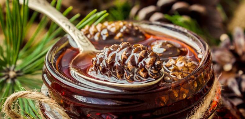Как варить варенье из сосновых шишек (  секреты приготовления, свойства, противопоказания)